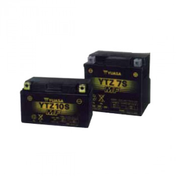 Factory Activated, Maintenance Free (AGM) - 12 Volt