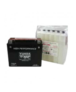 High Performance, Maintenance Free (AGM)- 12 Volt